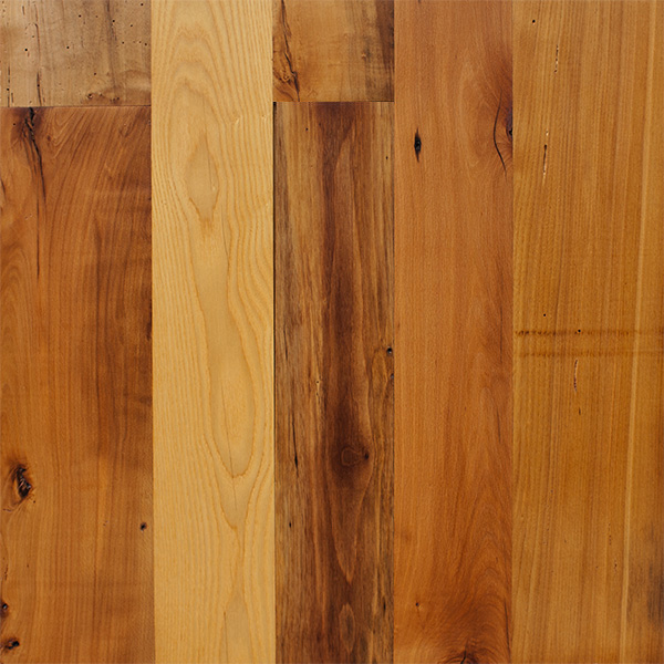 Bright Mixed Hardwoods